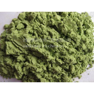 食品级果绿色素生产厂家