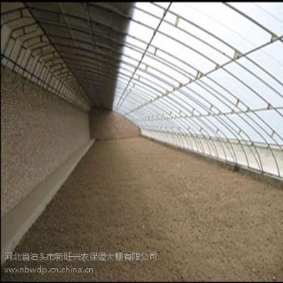 供应新旺兴农保温大棚保温板房种植大棚养植大棚