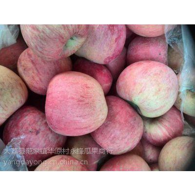 陕西苹果种植基地红富士苹果销售产地