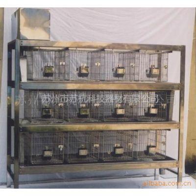 供应实验室繁殖 饲养 实验用兔笼 不锈钢 水冲式 生产厂家 可定制规格