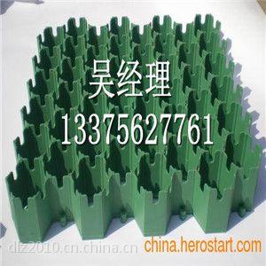 临沂停车位植草格生产厂家 塑料植草格