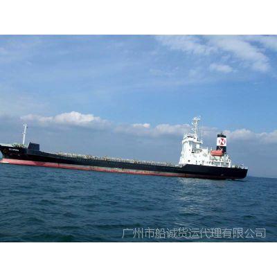 广东潮州到山东青岛的海运集装箱专线公司