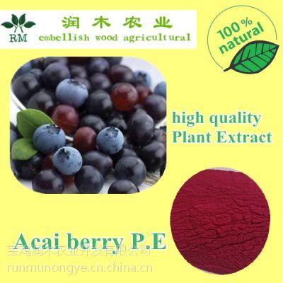 润木 巴西莓提取物 巴西莓粉 阿萨伊