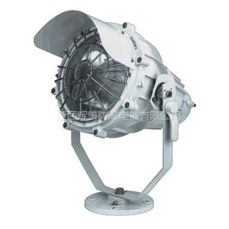 (辉策)供应BTD系列防爆投光灯/防爆泛光灯(IIB IIC) 100W/200W/400W