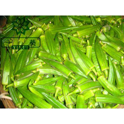 供应供应黄秋葵(六角豆)(鲜品