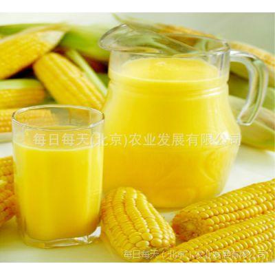 供应金银华妃榨汁速冻甜玉米粒