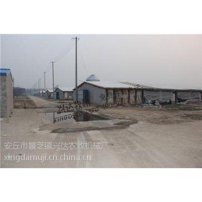 优质颗粒饲料输送机_湘潭市颗粒饲料输送机_兴达农牧