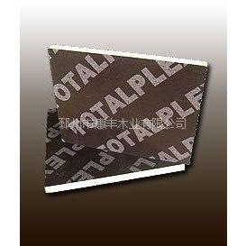 供应大量优质板材 建筑板材 多层覆膜板