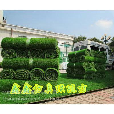 北京假草坪批发假草坪价格