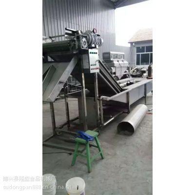 超低价山东 清洗机、气泡 喷淋 分选机--隆盛食品机械厂