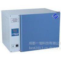 供应电热恒温培养箱型号DHP-9052A上海飞越DHP-9082A微生物培养箱厂家