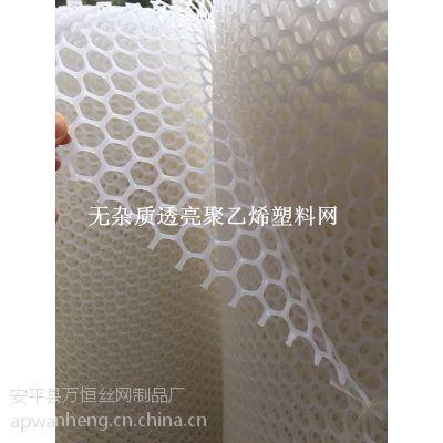 【万恒塑胶网】室内养殖铺垫隔离圈围网@鸡床搭建方式@湖北黄石塑料平网批发