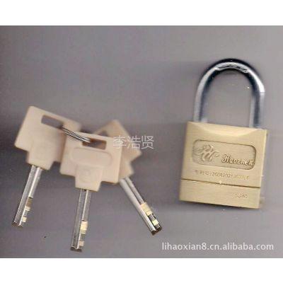 供应银行金融设备 卡封锁 运钞箱专用锁 锌合金卡封锁(大) padlock