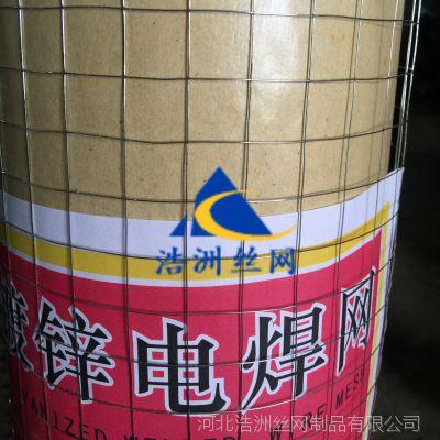 浩洲销售钢丝焊接网片 小丝0.5mm抹墙电焊网 建筑保温镀锌电焊网