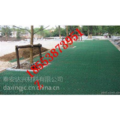 HDPE河南植草格厂家,河南塑料植草格公司