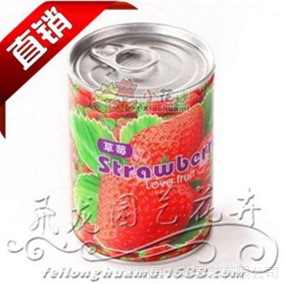 易拉罐花卉植物多品种 办公室种植 室内草莓种子 创意盆栽