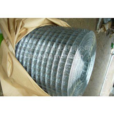供应环航网业、优质不锈钢电焊网