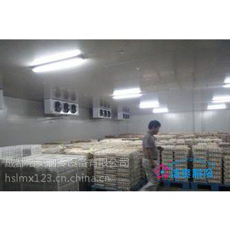 四川食品保鲜库安装 食品保鲜库价格 食品冷冻冷藏库