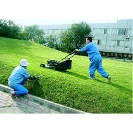 供应物业管理,物业项目代理,清洁服务,外墙清洗,石材晶面,工程绿化,绿化养护托管,植物租赁与销售