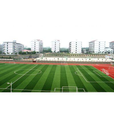 供应上海、江苏、浙江、人造草坪、人工草皮 足球场工程、铺设施工厂家