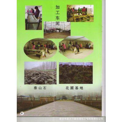 供应承接园林施工设计【环境优美 四季如春】