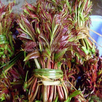 红香椿种子多少钱,新产一级良种批发销售