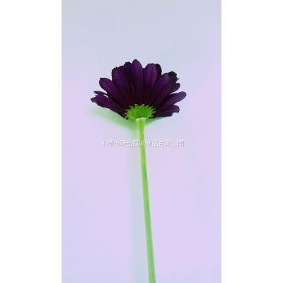 东莞市臻茹植绒制品有限公司提供专业供应仿真植物塑胶花枝植绒