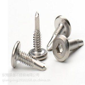 5.5*19东莞强星不锈钢钻尾自攻螺钉 厂家直销不锈钢自攻自钻螺丝