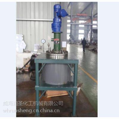 磁力反应釜、润圣化工(图)、磁力反应釜厂