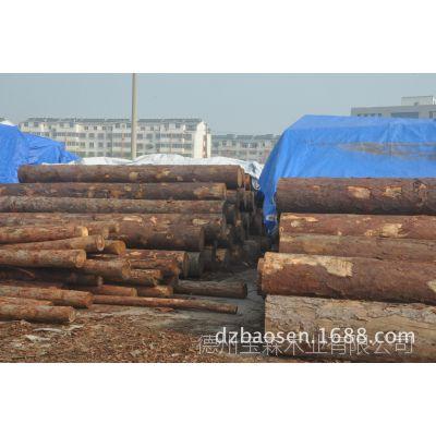 宝森木业 进口落叶松原木、落叶松方木、品质保障、宝森