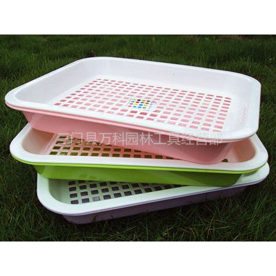 供应育苗盘 双层芽菜盘 小麦草种植盘 无土栽培盘 芽苗菜育苗盘专用