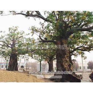 供应优质塑树中国供应商发布