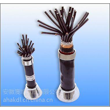 ia-DJVVP22厂家本安计算机电缆专业生产