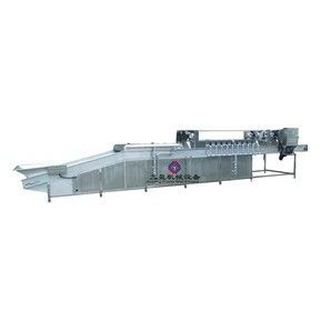 供应枸杞清洗机,葡萄干红枣清洗线,净菜加工生产线JYG-9000