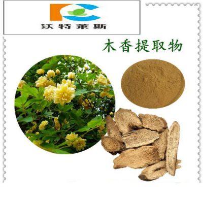 木香提取物 甘肃大量现货 纯天然 厂家直销 现货包邮