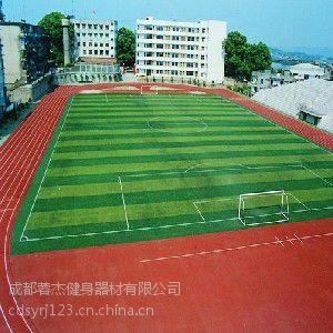 成都运动场塑胶地坪销售 成都人造草坪批发厂家 【蓉杰】