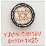 兴业电缆 YJV22 0.6/1KV 4*50 2*25
