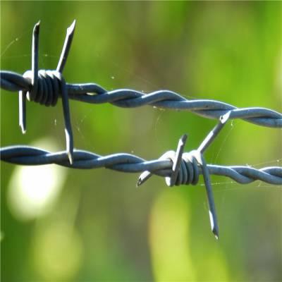 旺来包塑刺绳生产厂家 刺铁丝网 芒刺线