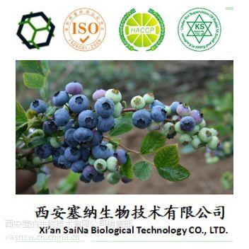 西安塞纳生物供应中国越橘越桔提取物25%花青素原花青素
