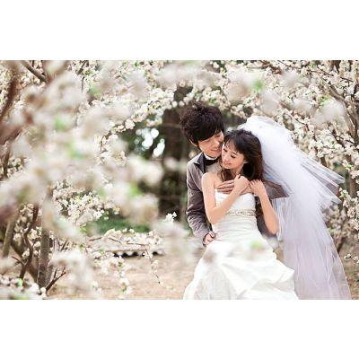 供应青岛婚纱摄影排名排行榜|青岛创意菲梵摄影
