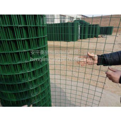安平衡林厂家销售优质荷兰网,绿色荷兰网、pvc荷兰网
