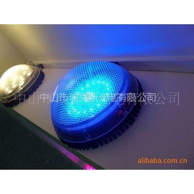 供应厂家直销、200MM点光源,面包花边灯,圆形灯,LED景观灯108珠灯