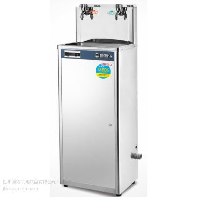 四川绵阳工厂电开水器碧丽热水器一开两温节能饮水机