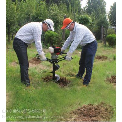 山东永佳动力股份有限公司,手提式挖坑机AG65HD