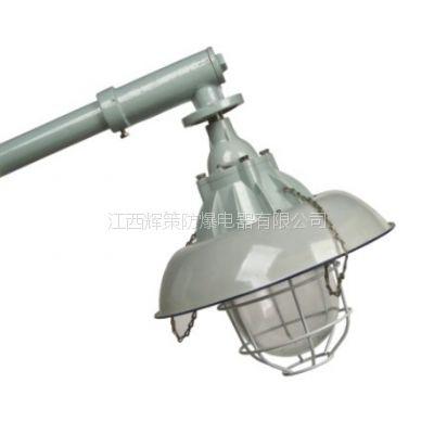 (辉策)供应防爆马路灯BCM系列防爆马路灯(IIB IIC