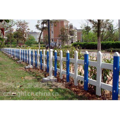 供应安徽巢湖PVC草坪护栏绿化带护栏花坛围栏