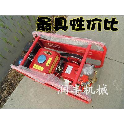 农用高压喷雾器 可以喷水20米水状喷雾器 润丰汽油打药车