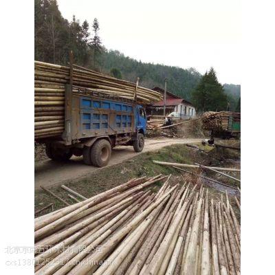 大兴区杉木杆 可以用在绿化 植物支柱顾牢