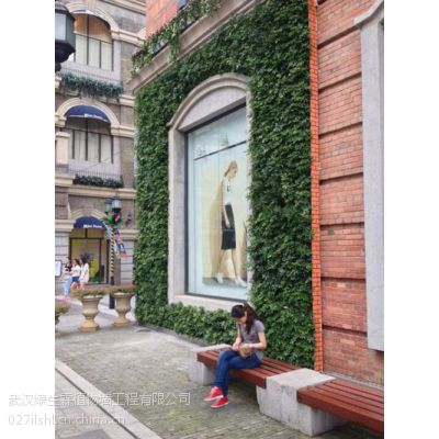 襄阳植物墙|武汉植物墙公司|植物墙技术