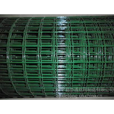 供应供应浸塑荷兰网厂家 铁丝网 涂塑pvc荷兰网厂家及价格安平协通
